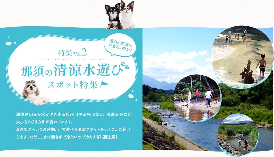 特集コンテンツ ワンコネット那須 愛犬 ペットと一緒に楽しめる那須高原の旅行情報 宿ペンション情報が満載 アウトドア 旅行 那須