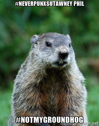 Create An Image Meme Generator Groundhog Day Groundhog Pictures Groundhog