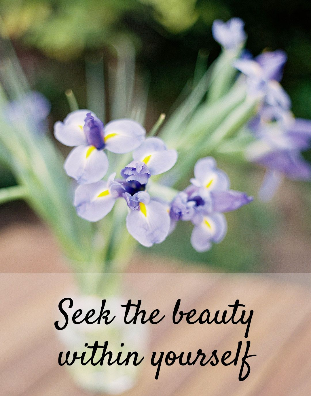 An inspirational quote seek the beauty within yourself an inspirational quote seek the beauty within yourself photography by jen huang dhlflorist Images