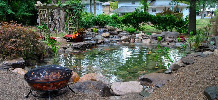 Gartenteich Bauen: Von Fisch und Pflanze bis zur Pflege