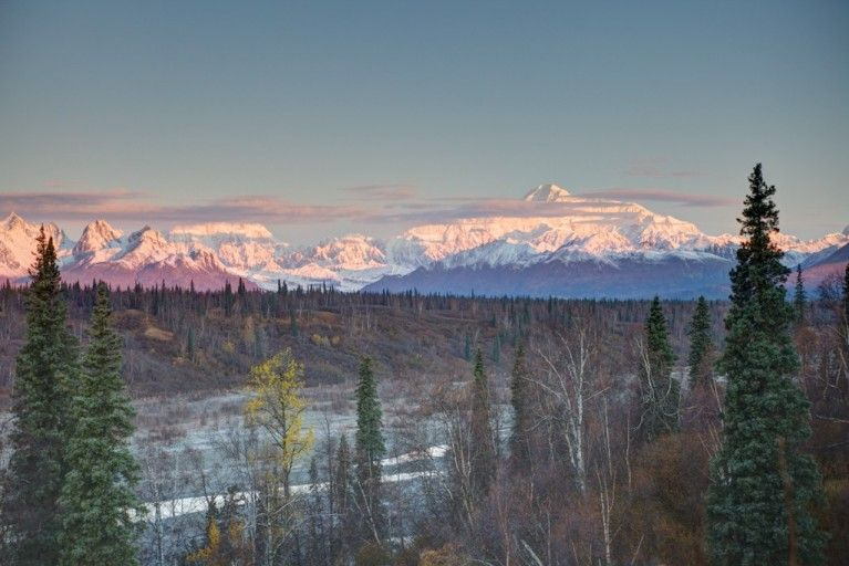 Driving from anchorage to denali the most dreamy stops