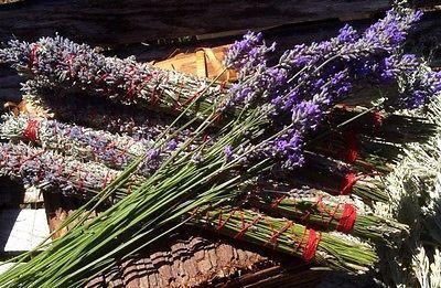 5 Oregon Fresh Sage And Lavender Smudge Sticks Native American Made