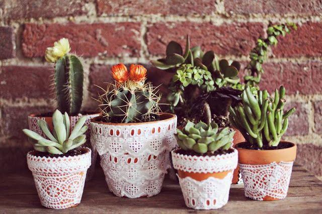 vasos de plantas decorados