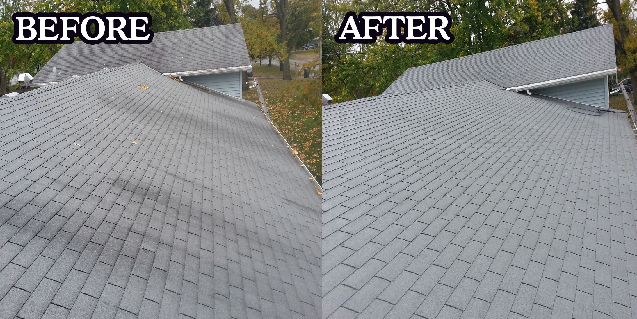 Cleaning Up Algae Roof Repair Roofing Contractors Roof Cleaning
