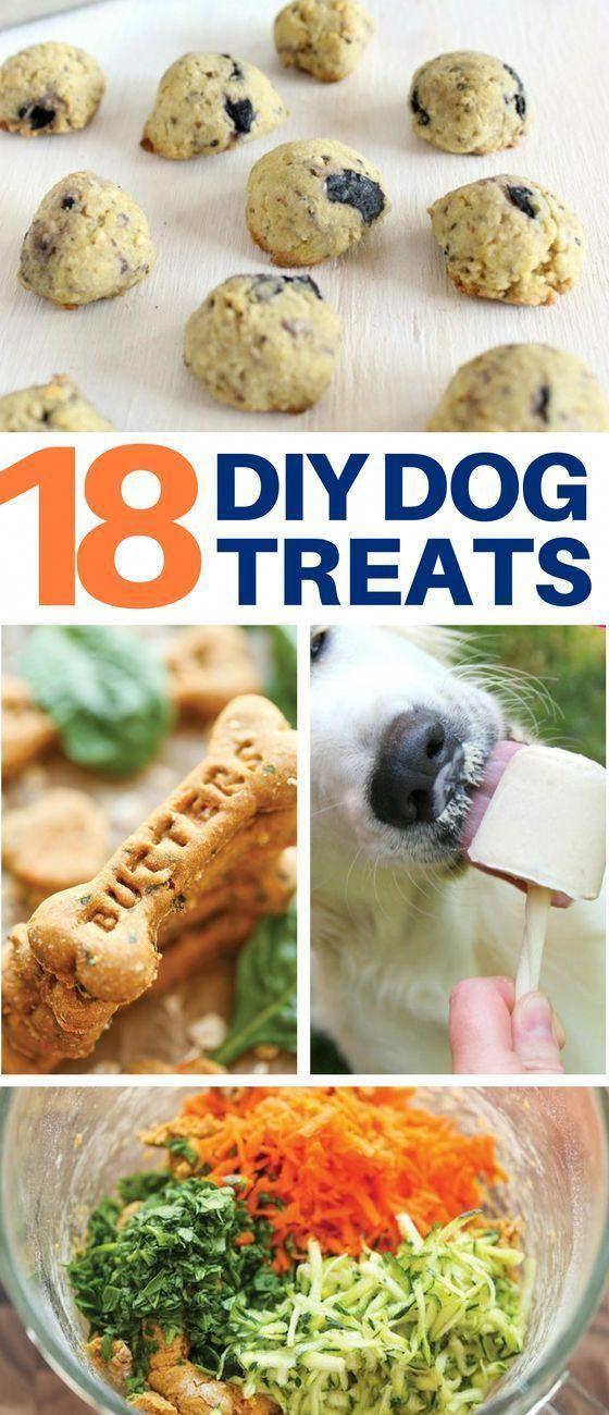List of Cool DIY Dog from diybunker.com