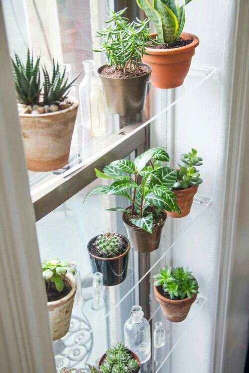 Pin di stefania manna su Appendere vasi di fiori | Pinterest ...