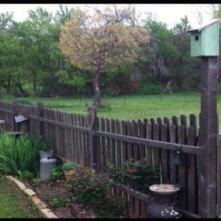 Pin By Sabrina Harmon On Craft Ideas Backyard Backyard Landscaping Backyard Fences