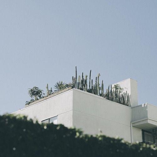 nice edge for around roof top garden.