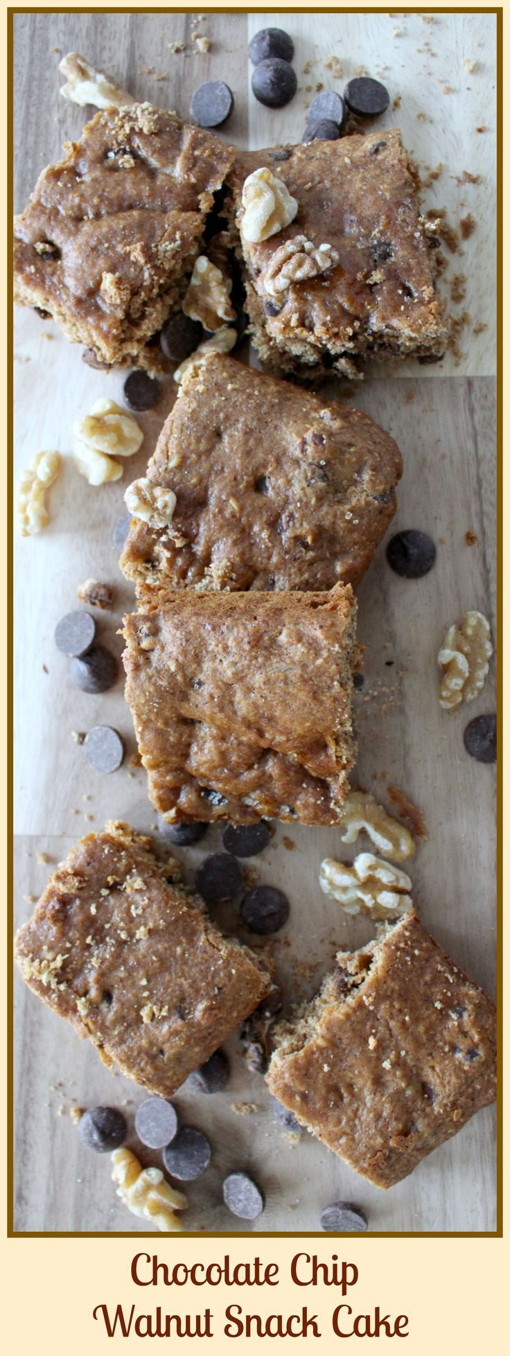 Chocolate chip walnut snack cake with images snack