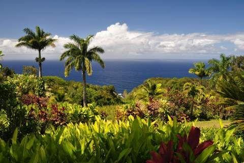 Garden of Eden Botanical Arboretum