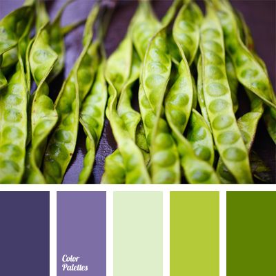 Great contrast of colors. The presence of a saturated violet color shades color of green peas nicely. Such color scheme can be used in design of kitchen or dining room. Palette can be used in the spring-summer wardrobe of a young girl.
