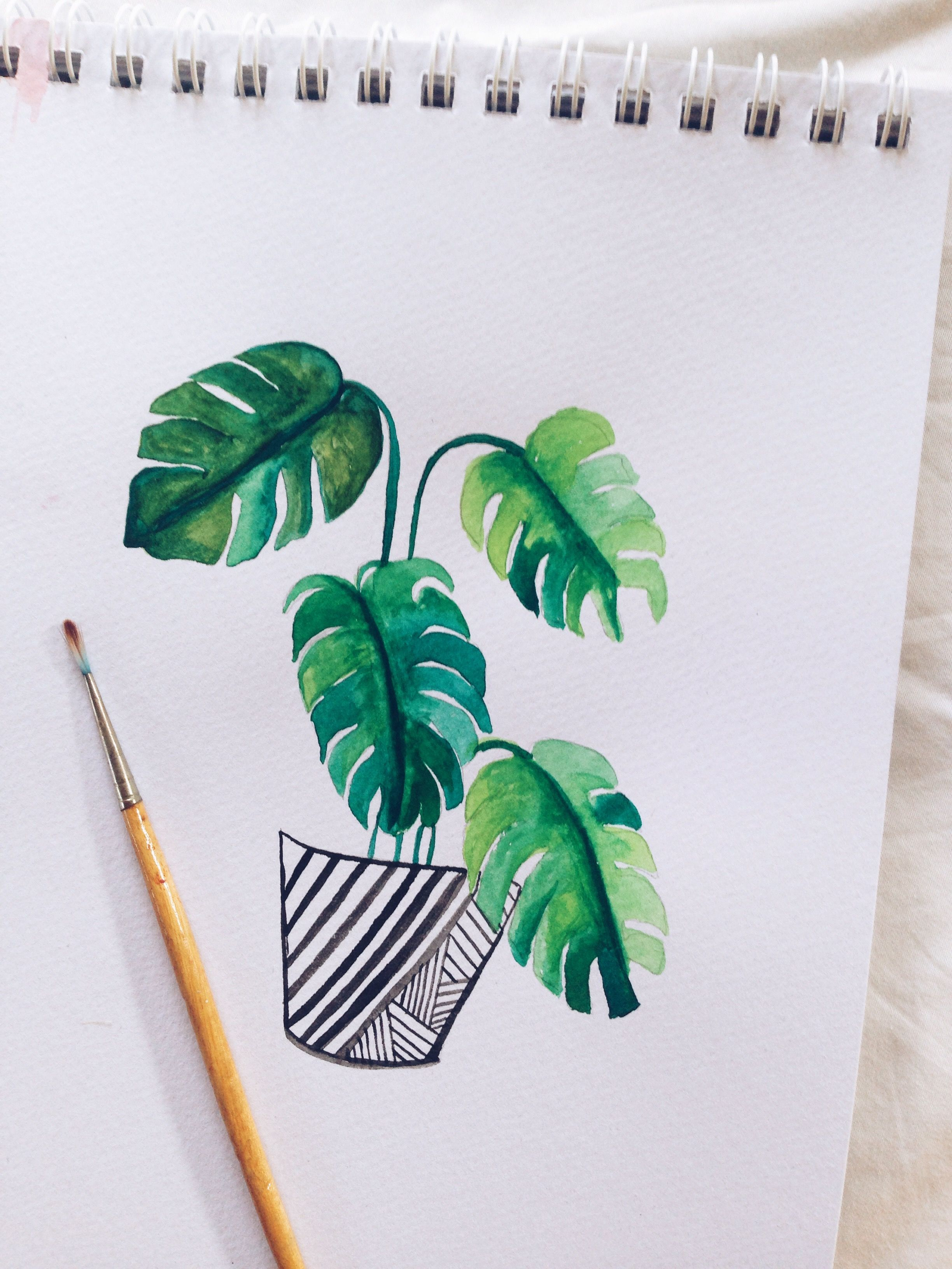 Watercolour Process Video Monstera Watercolor Art Diy