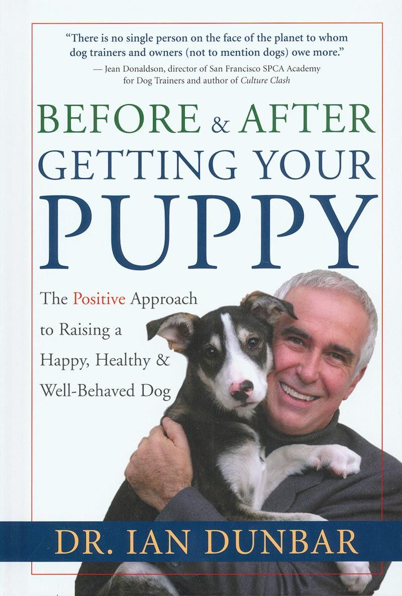 Before After Getting Your Puppy The Positive Approach To