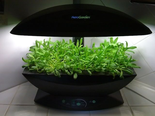 Hack Your Aerogarden To Take Inexpensive Lights Instead Of 400 x 300