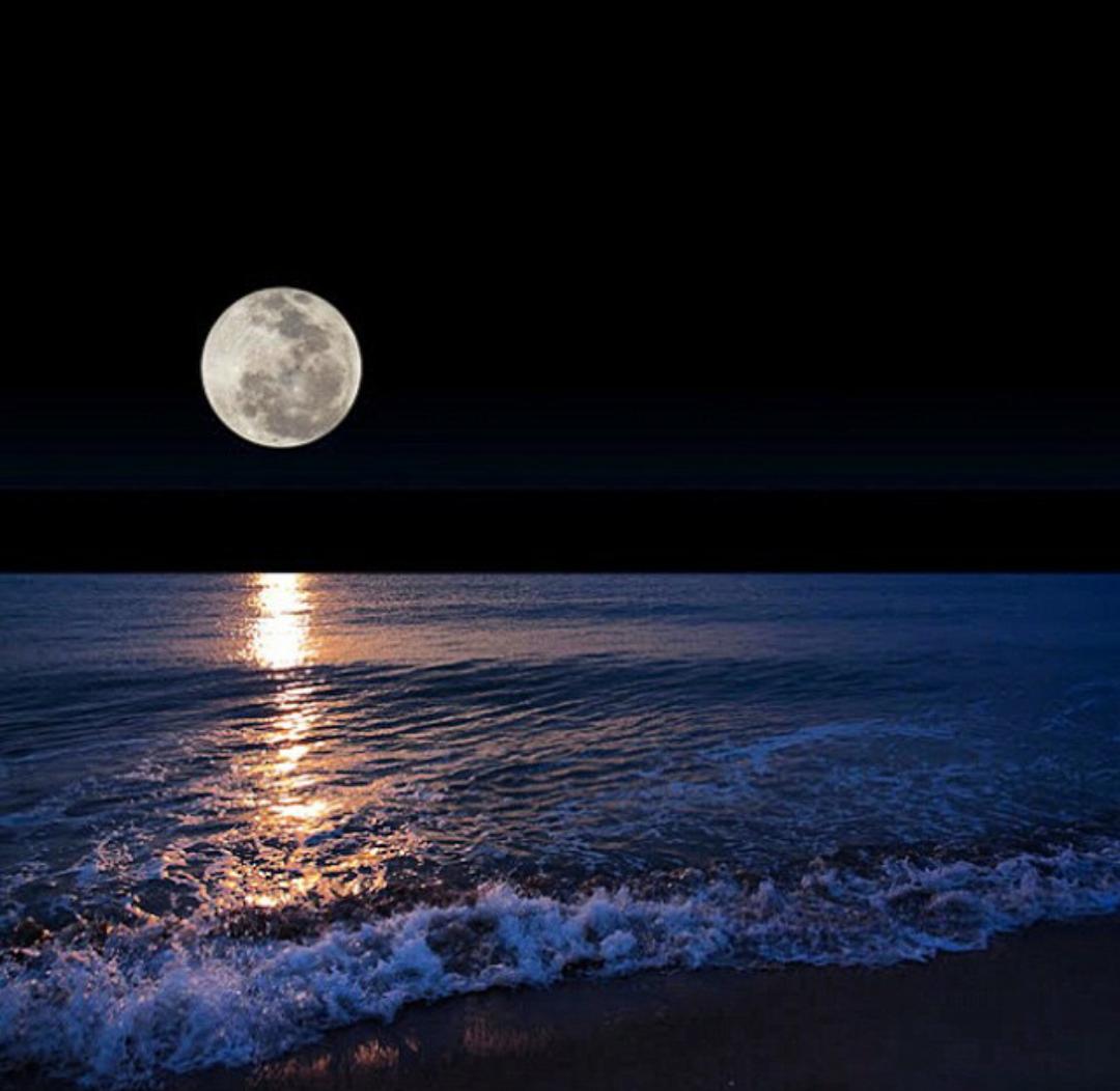 Спокойной лунной ночи картинки
