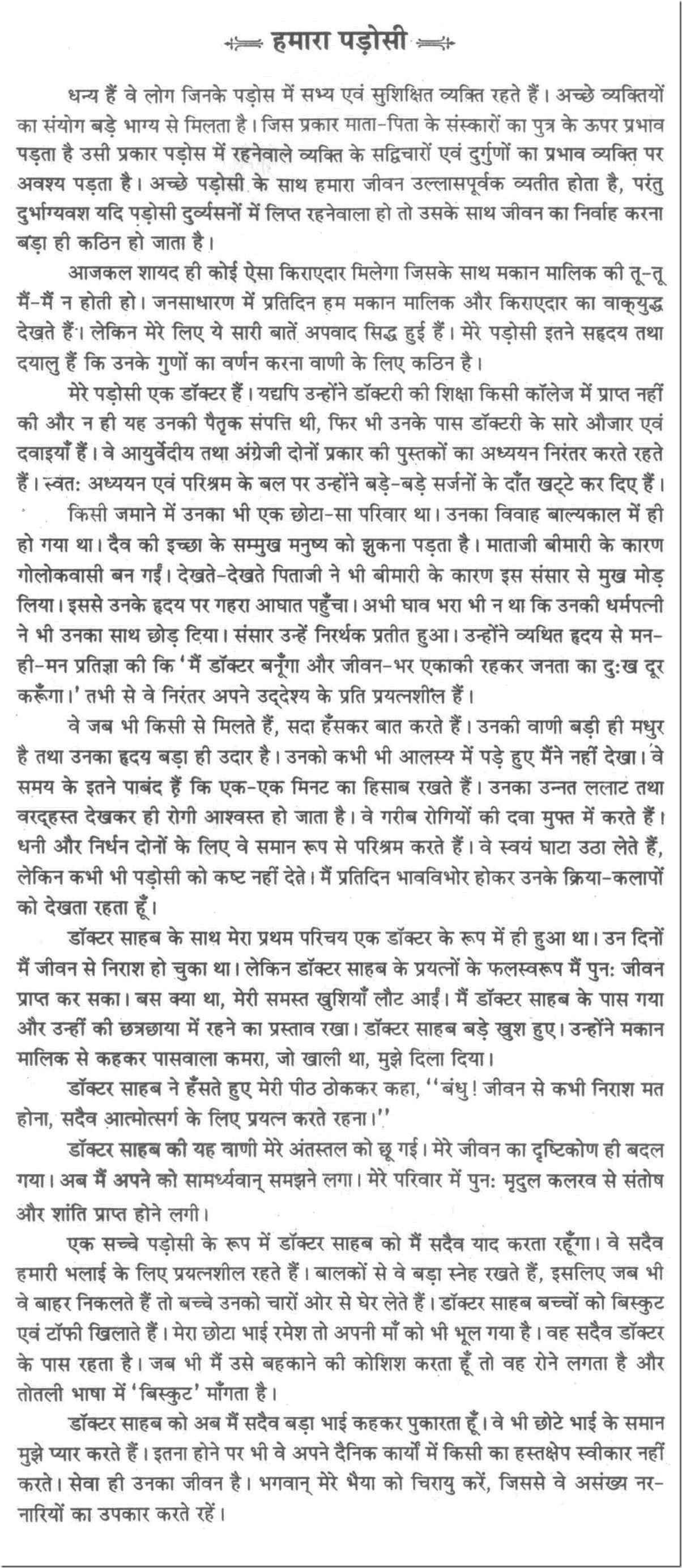 Essay On Our Neighbors In Hindi Essay Essay Outline Sample Essay