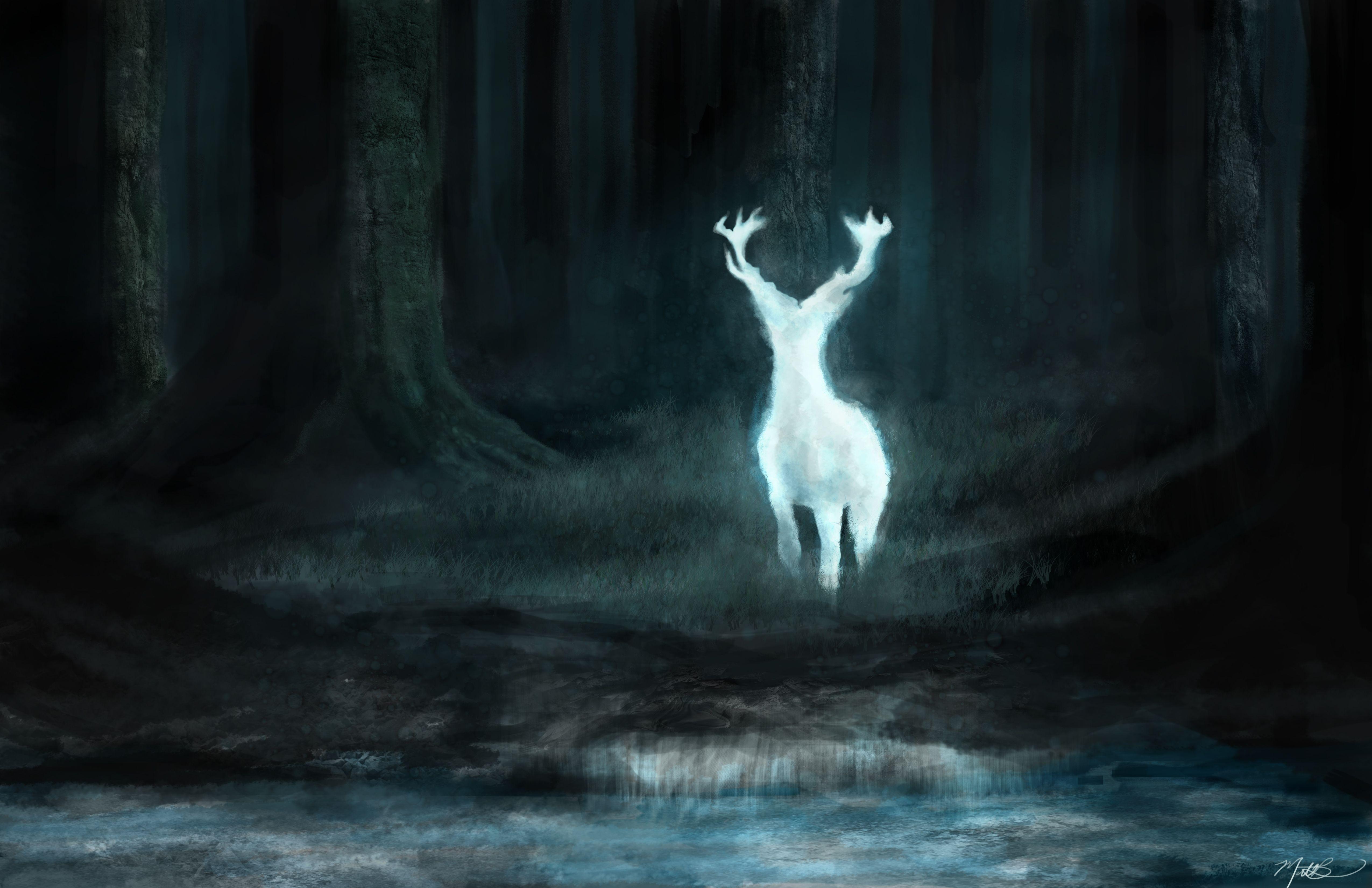 Cool Wallpaper Harry Potter Expecto Patronum - 58f4b7fc231a40d06e920d0177b5816d  HD_73496.jpg