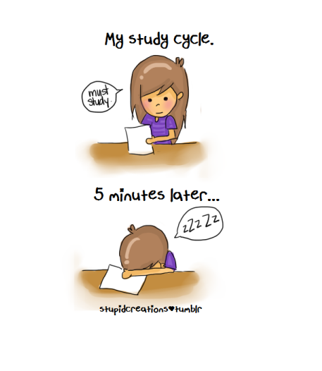 Study Lol Motivational Quotes Study Hard Funny Quotes Wallpaper