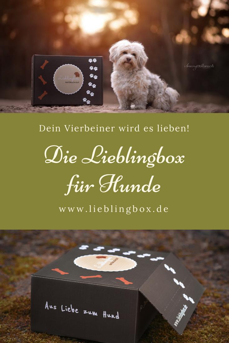 Die Lieblingbox Ist Da Die Erste Gesunde Und Nachhaltige Uberraschungsbox Fur Den Vierbeiner Ein Liebevoll