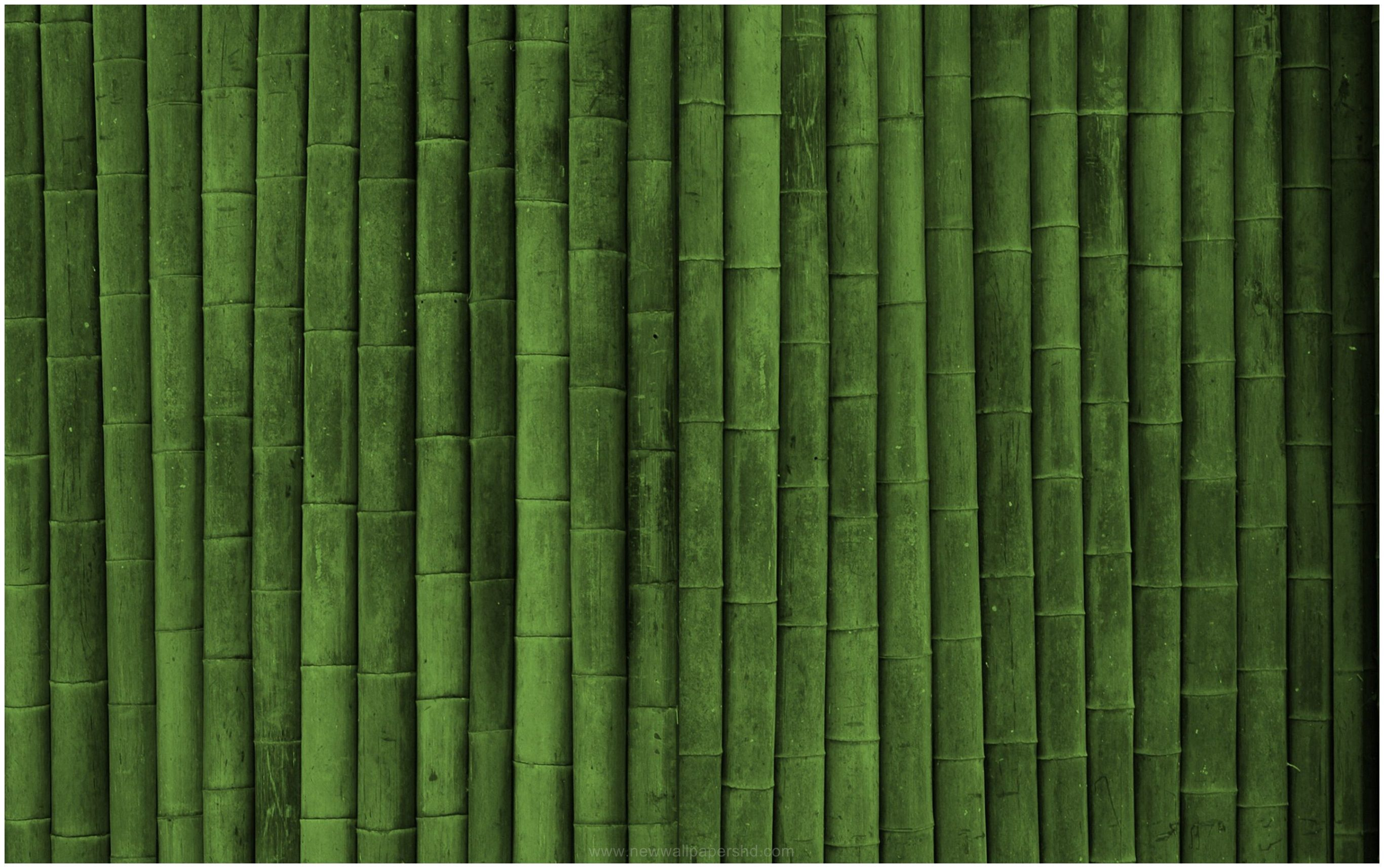 Bamboo Texture Wallpaper  980121 - Wallpaper Hd - Pinterest