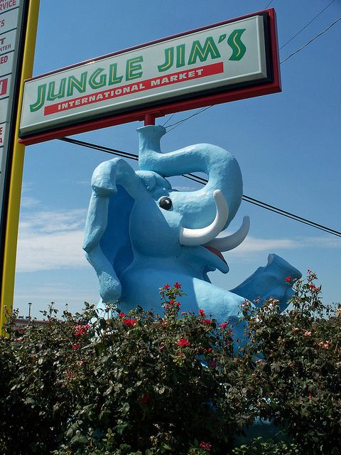 47 Reasons Why A Trip To Jungle Jim S Will Change Your
