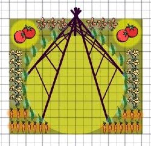 kids vegetable garden layout