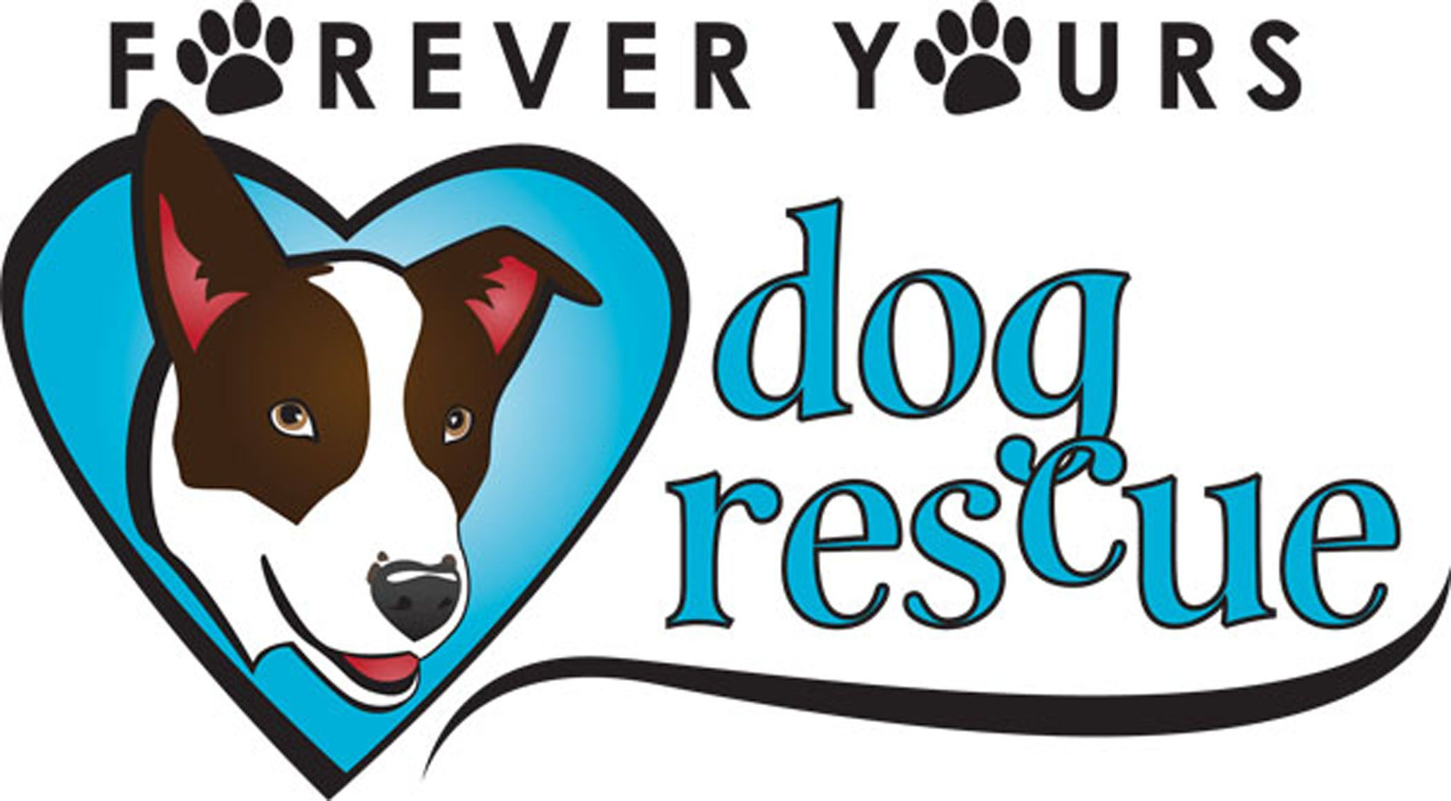 Get to know forever yours dog rescue rescue dogs your