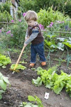 Que Faire Au Jardin En Avril Transmite
