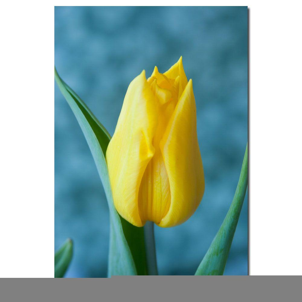 in x in yellow tulip canvas art tulip yellow tulips and art