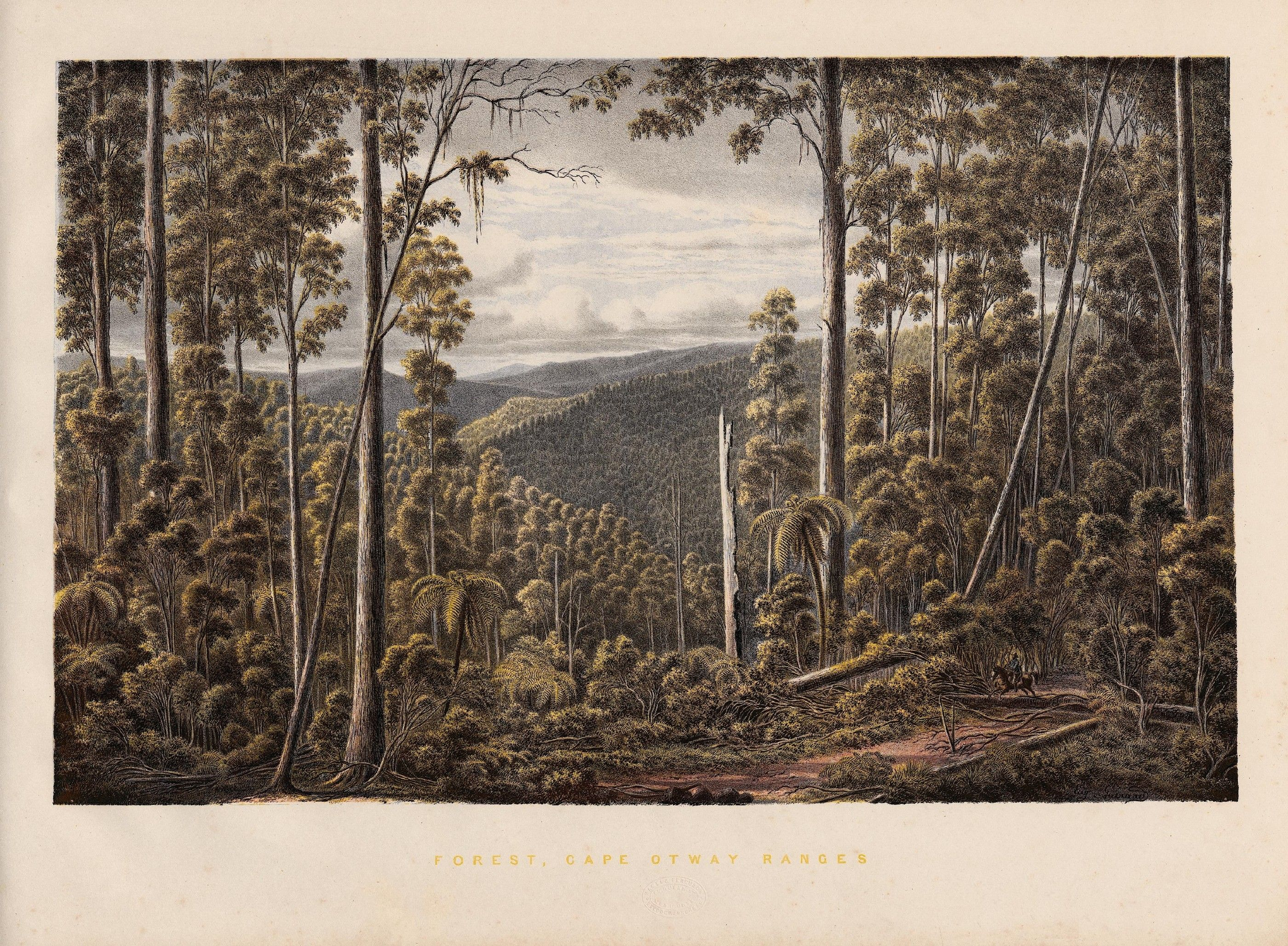 Australian landscape- EV Guérard