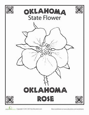 Images Of Oklahoma State Flowers Coloring Pages Google Search
