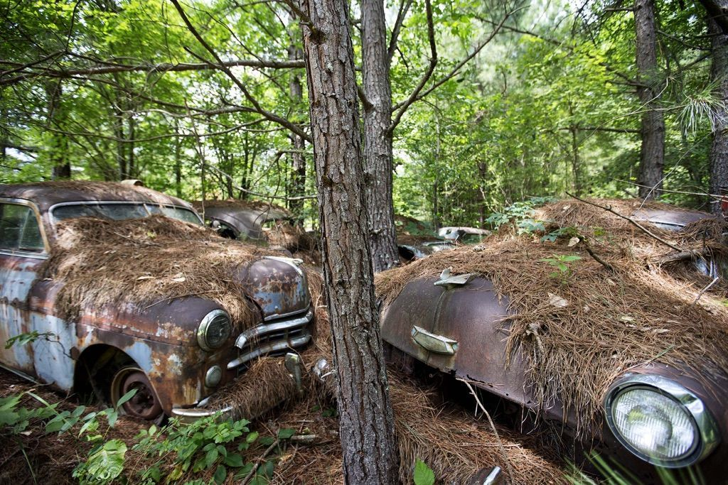 Take A Tour Of The World\'s Largest Known Classic Car Graveyard ...