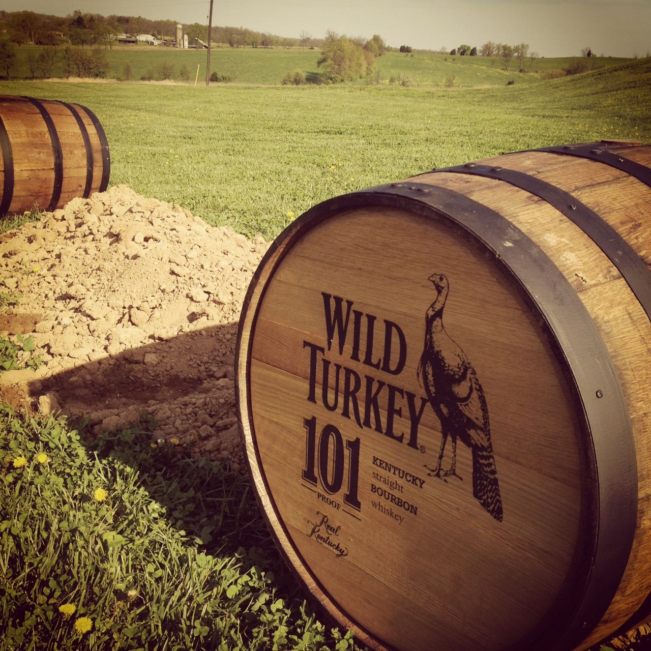 Wild Turkey Whiskey, Wild Turkey