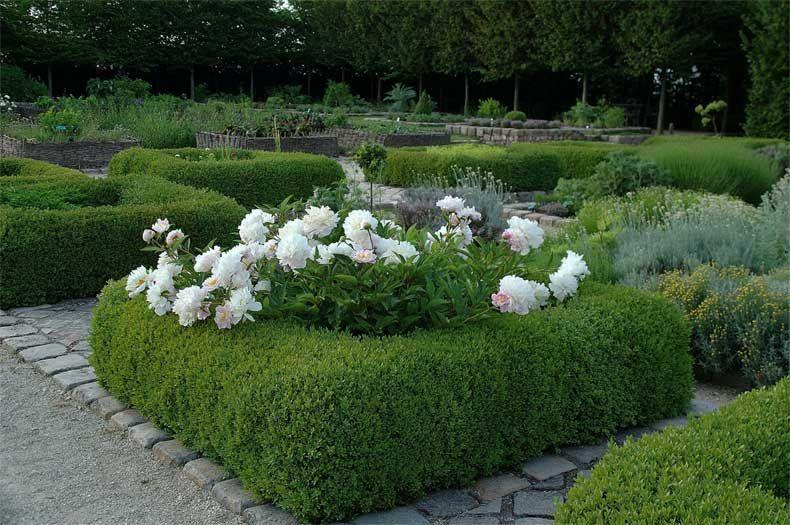 Jardin du Bois Richeux France (With images) | Garden ...
