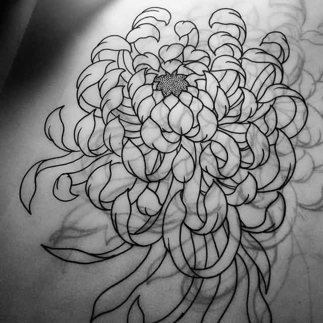 chrysanthemum design 43 wonderful chrysanthemum tattoos ink pinterest chrysanthemum tattoo. Black Bedroom Furniture Sets. Home Design Ideas