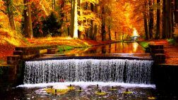 river fall forest park waterfall leaves autumn colors desktop