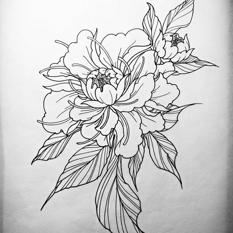Amazing Black Outline Peony Flower Tattoo Design Illustration