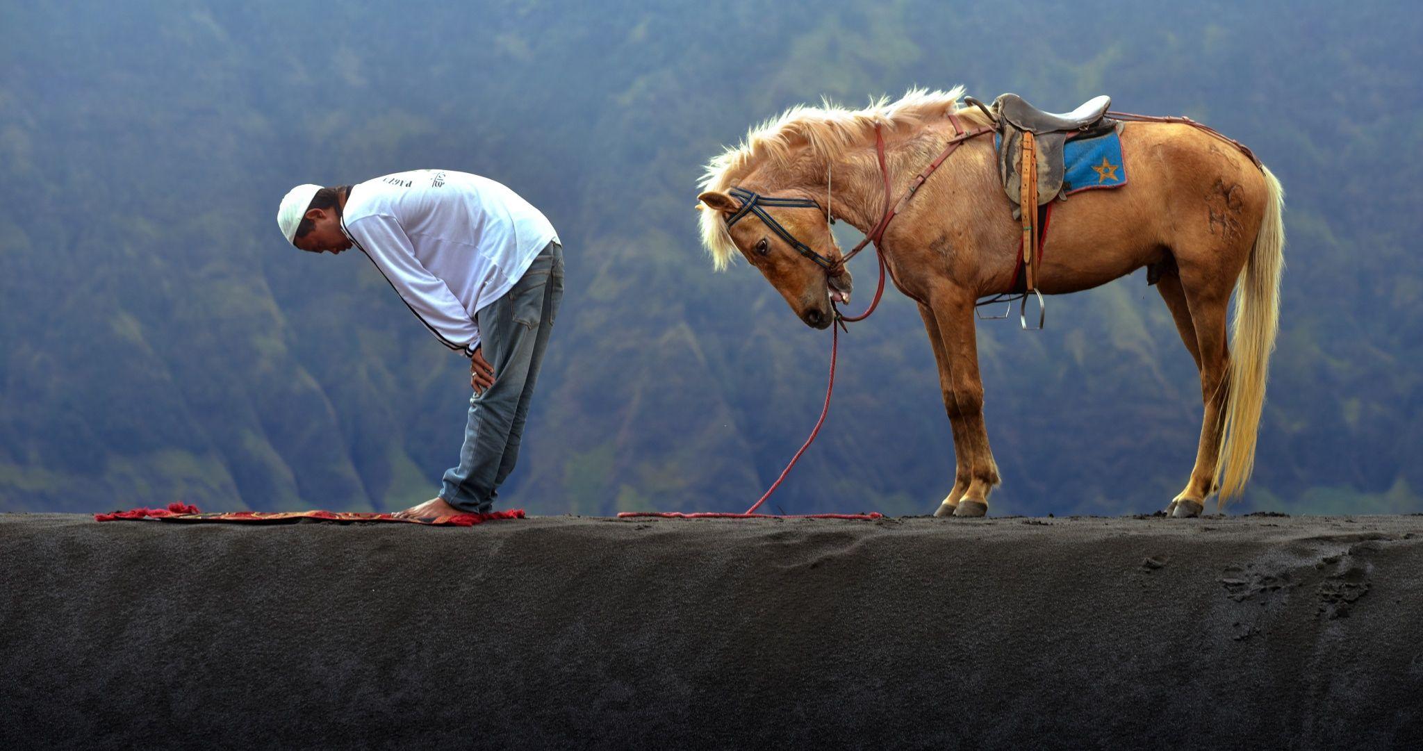 Fotografia Obedience de Fahmi Bhs na 500px