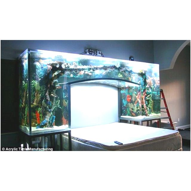 Aquarium Bedroom From TV Show Tanked. I Want One!!!!