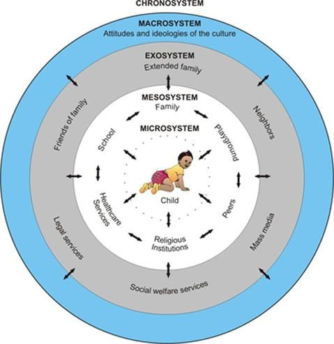 the four systems of the bioecological And empirically, in bronfenbrenner's bioecological model of development   the determinants of chronic absenteeism: a bioecological systems approach.