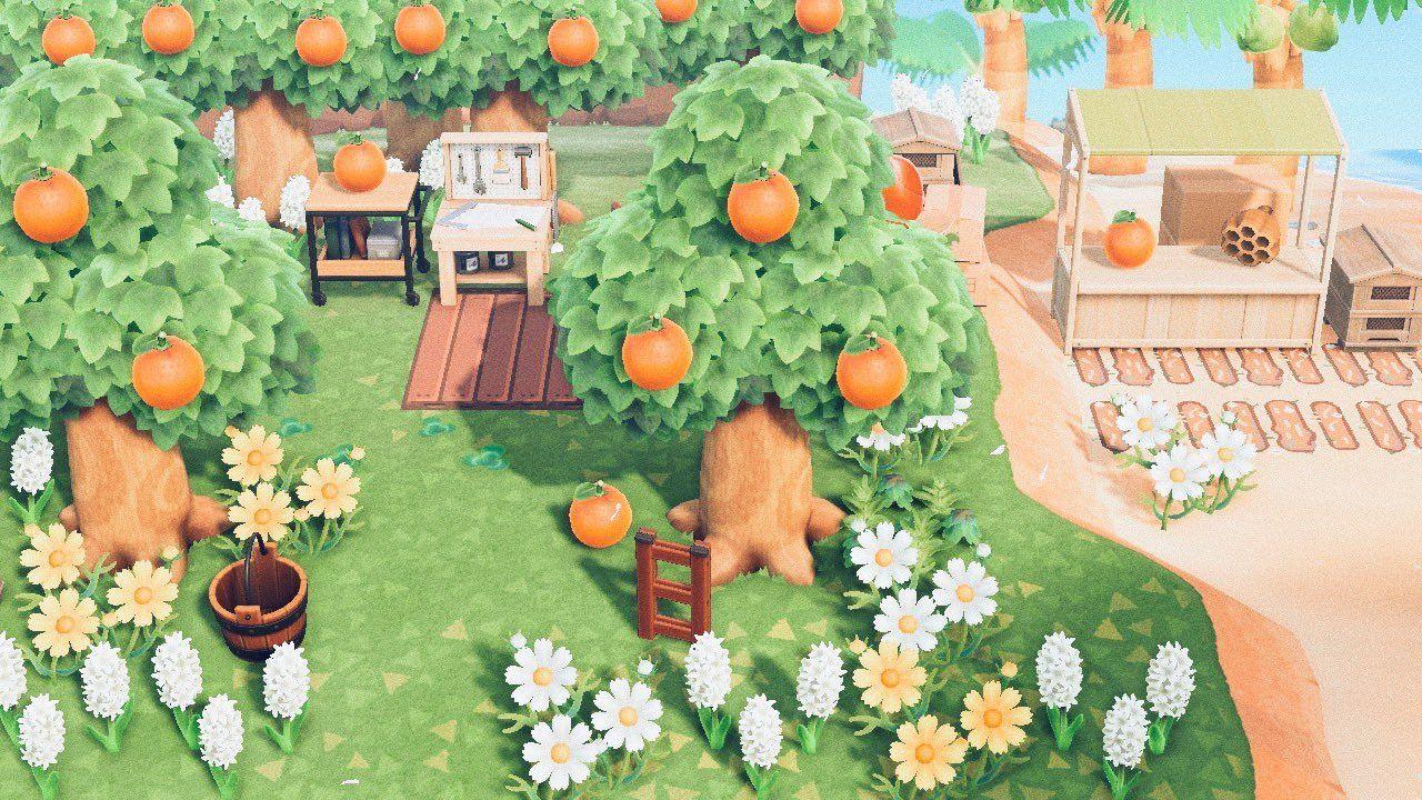 Pin On Animal Crossing Island Inspo