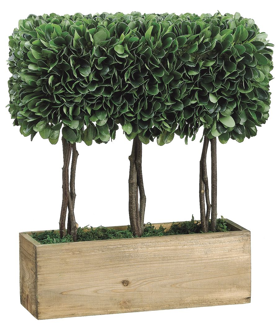 fake boxwood with images plants silk plants faux plants on interior using artificial boxwood panels with flowers id=45850