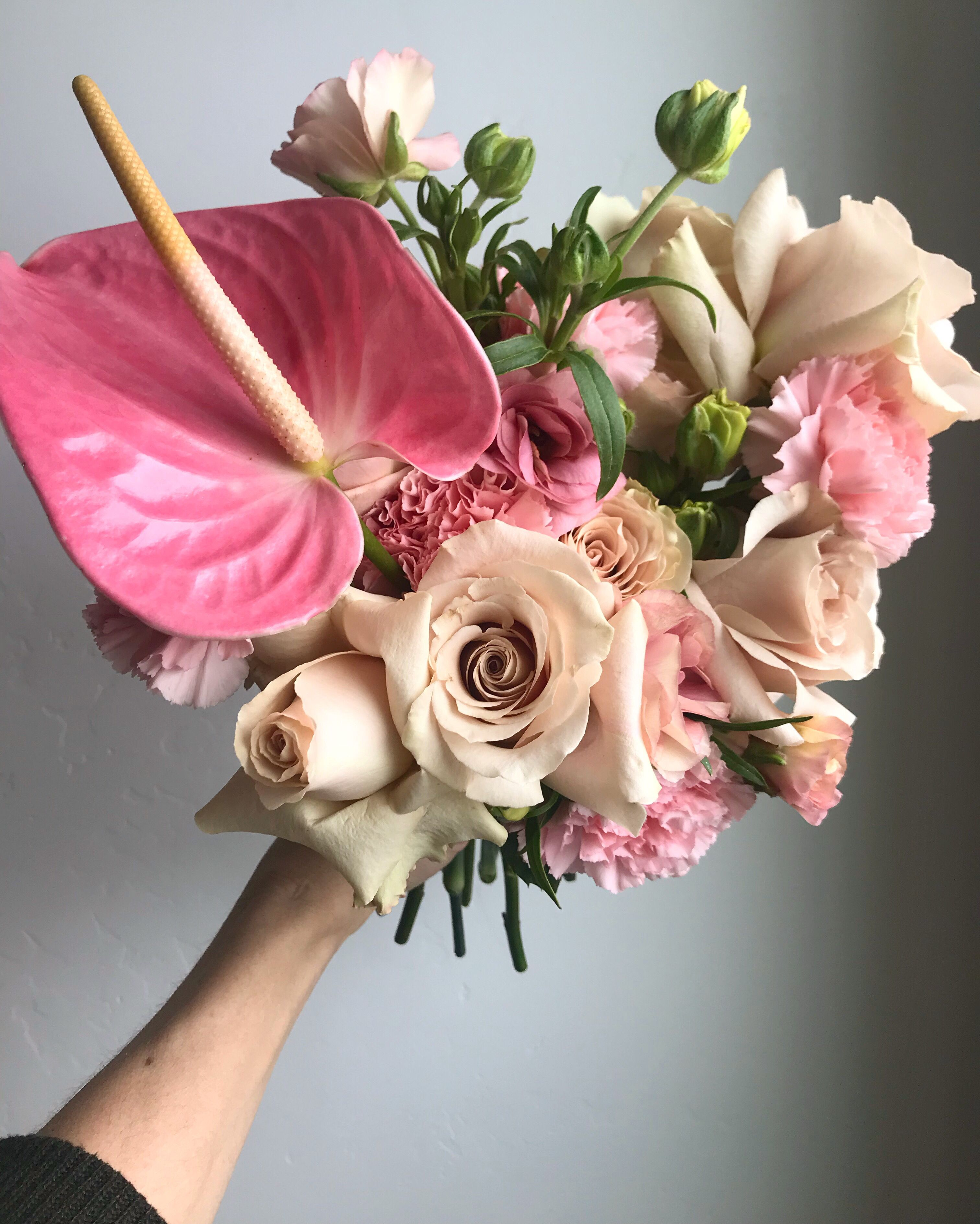 Anthurium Anthurium Bouquet Small Flower Arrangements Anthurium