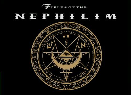 Fields Of The Nephilim - Google Search