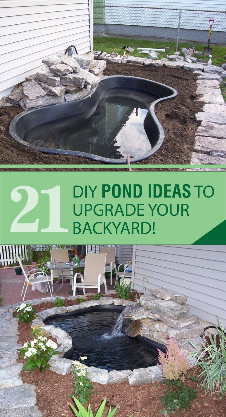 Photo of Tired of the same look your backyard is giving off? Why don't you re-invent your…