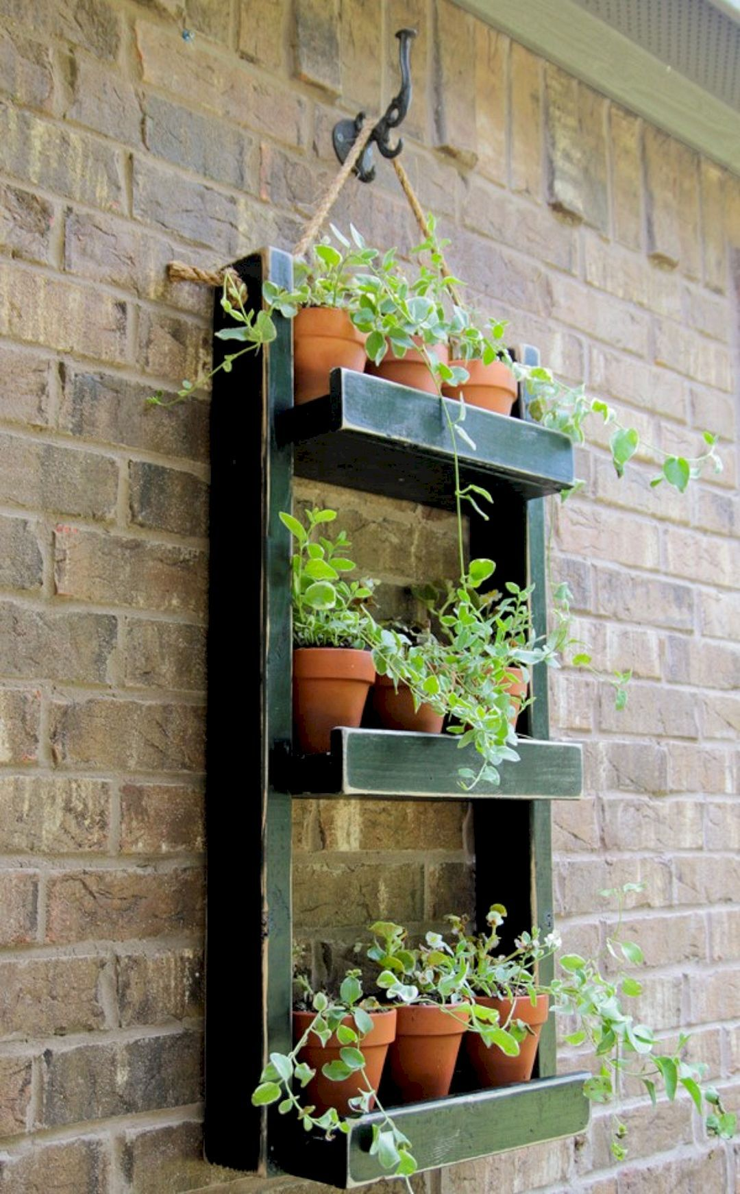 15 Best Indoor Herb Garden Ideas for Your Small Home and