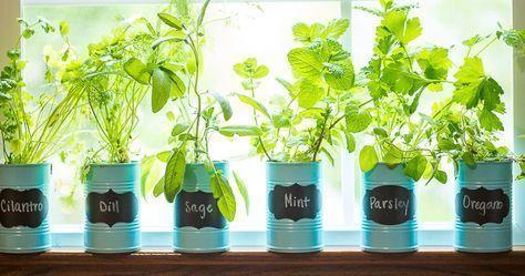 Photo of 55 Ideas For Garden Path Ideas Cheap –  55 Ideas For Garden Path Ideas Cheap  – …