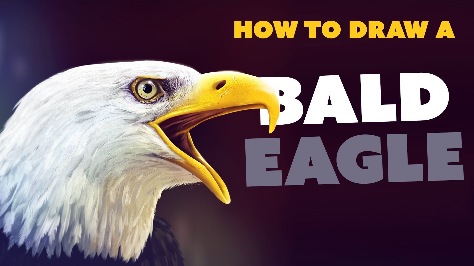 In this tutorial, I'll teach you how to draw a realistic bald eagle using Corel Painter, Photoshop CC and a Wacom tablet. Follow along with me step-by-step a...