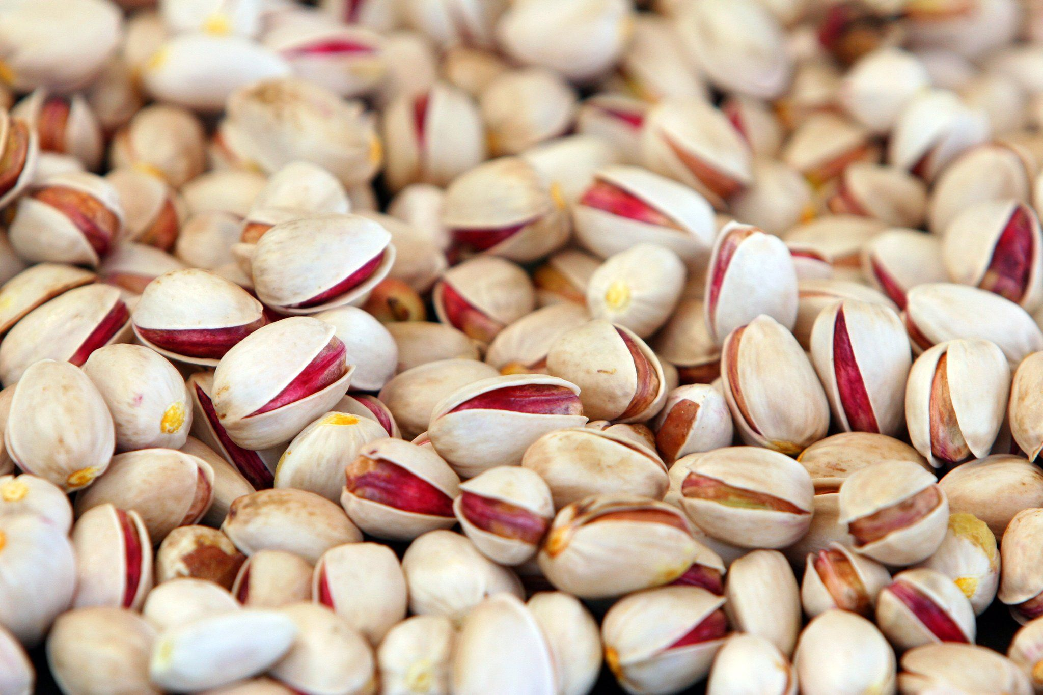 Gizmodo: It's going to be a bad year for pistachios https://t.co/Mp0r7YGWLF https://t.co/YJtPdDe1YM