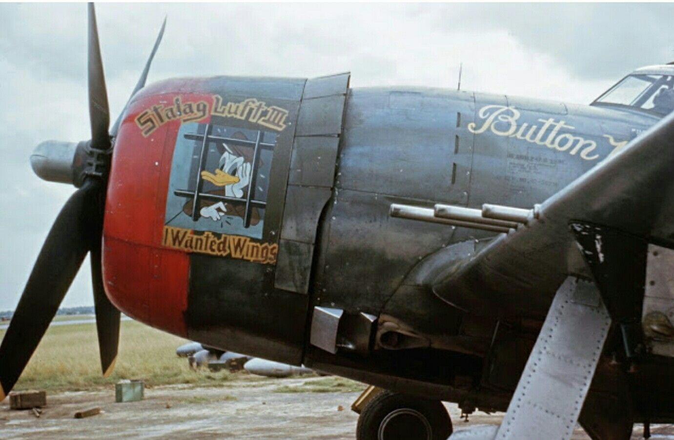 P 47d Button Nose Is The Phrase Under The Cockpit Nose Art Wwii Bomber Art Aircraft Art [ 901 x 1381 Pixel ]